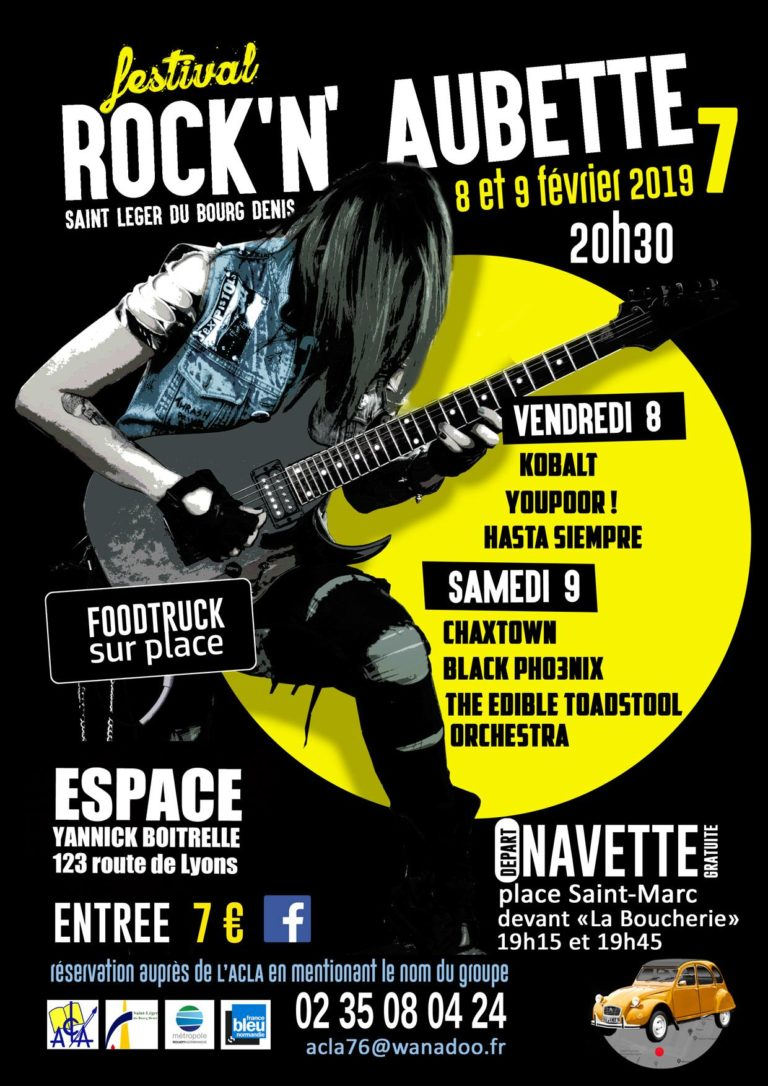 🍄 Concert au festival Rock'N'Aubette 🔈